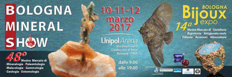bologna mineral show